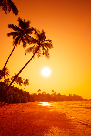Photo for Sunset on tropical beach - Royalty Free Image