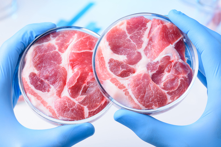 Foto de Meat samples comparison in laboratory Petri dish in scientist hands - Imagen libre de derechos