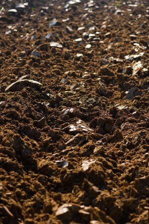 Photo pour Field arable agricultural land ploughed after harvesting closeup - image libre de droit