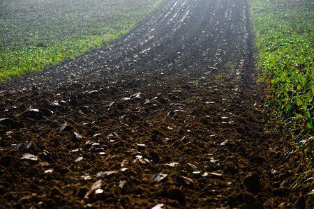 Photo pour Field arable agricultural land ploughed to grow crops. - image libre de droit