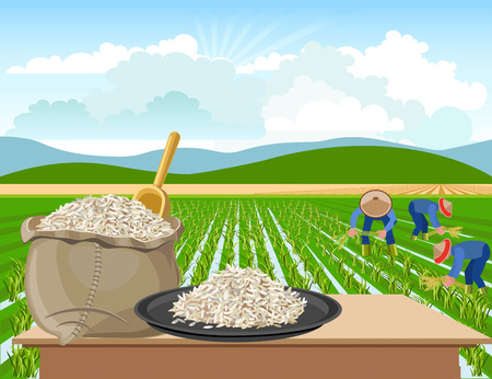 Illustration for Bag and a plate of rice on a rice field background - Royalty Free Image