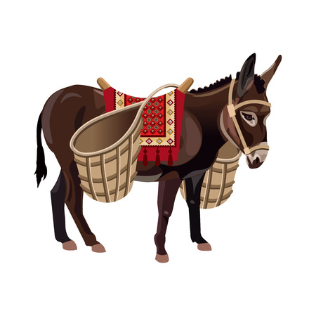 Illustration pour Donkey with wicker baskets. Vector illustration isolated on the white background - image libre de droit