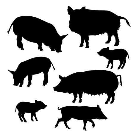 Set of pigs and piglets silhouettes. Vector illustration isolated on white background