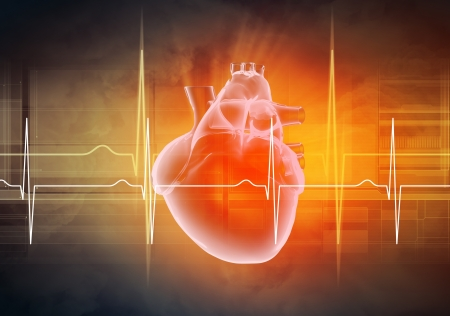 Foto de Virtual image of human heart with cardiogram - Imagen libre de derechos