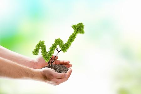 Photo pour Image of human hands holding plant shaped like arrow - image libre de droit