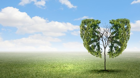Photo for Conceptual image of green tree shaped like human lungs - Royalty Free Image
