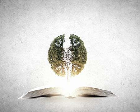 Foto de Conceptual image with green tree growing from book - Imagen libre de derechos