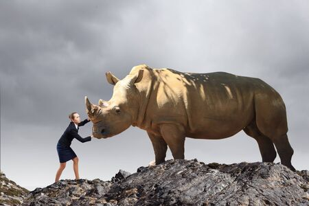 Photo for Businesswoman making effort to move huge rhino - Royalty Free Image