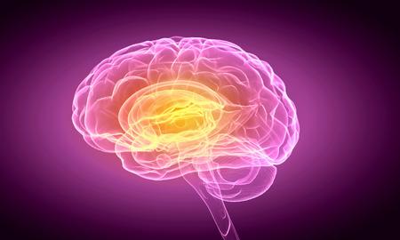 Foto de Science image with human brain on purple background - Imagen libre de derechos