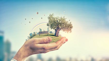 Foto de Close up of hand holding green tree concept - Imagen libre de derechos