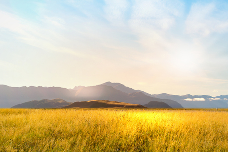 Photo for Natural landscape of summer field and high mountain - Royalty Free Image