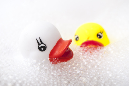 Photo for closeup of yellow and white rubber duck toys with moss in bath - Royalty Free Image