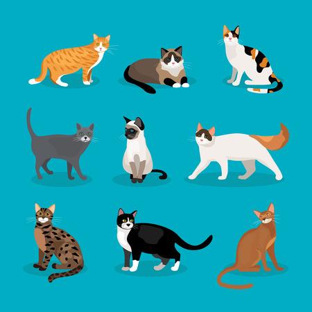 Ilustración de Set of vector cats - Imagen libre de derechos