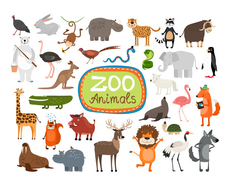 Photo for Vector Zoo Animals - Royalty Free Image