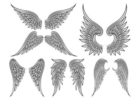 Illustration for Vector heraldic wings or angel - Royalty Free Image