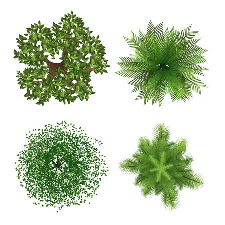 Ilustración de Top view trees - Imagen libre de derechos