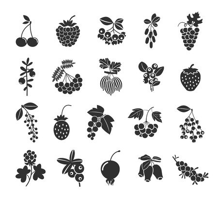 Illustration for Berries silhouettes icons - Royalty Free Image