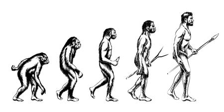 Illustration pour Human evolution. Monkey and australopithecus, neanderthal and animal, vector illustration - image libre de droit