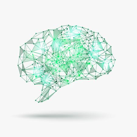 Illustration pour Low poly human brain. Knowledge and mind, concept creativity. Vector illustration - image libre de droit