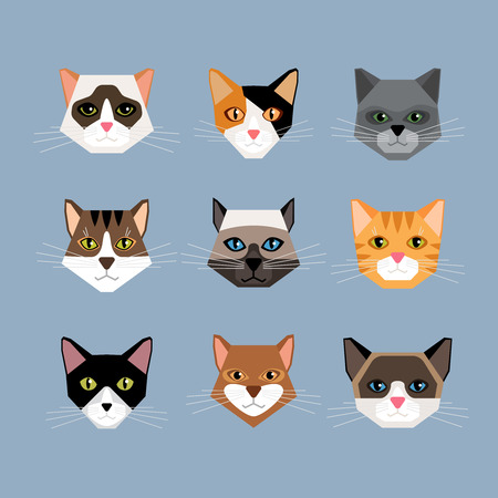 Ilustración de Set of cats heads in flat style. Face kitten, whiskers and ears, muzzle and wool. Vector illustration - Imagen libre de derechos