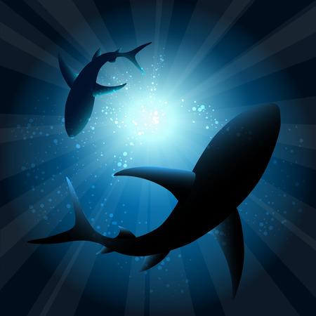 Ilustración de Sharks under water. Fish in ocean, animal nature life, swimming wildlife, vector illustration - Imagen libre de derechos