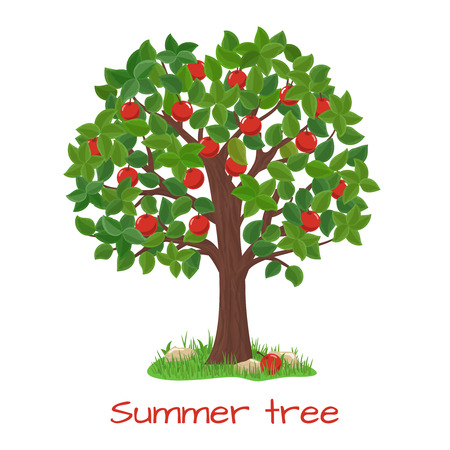 Ilustración de Green apple tree. Summer tree. Nature garden, harvest and branch, vector illustration - Imagen libre de derechos