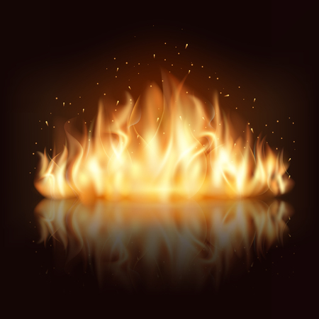 Illustration for Burning fire flame. Burn and hot, warm and heat, energy flammable, flaming vector illustration - Royalty Free Image