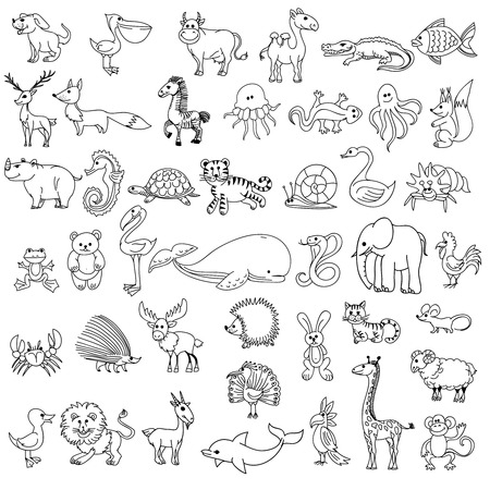 Illustration pour Doodle animals childrens drawing. Animal doodle drawing,  character animal wildlife, animal pelican cow camel and crocodile, fish and elk, fox and zebra, jellyfish and lizard, vector illustration - image libre de droit