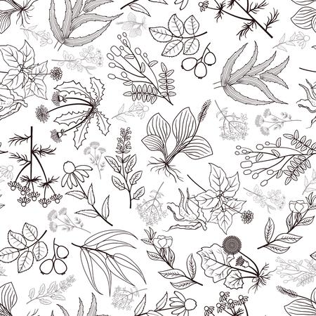 Ilustración de Herb plants background. Vector spices seamless pattern in monochrome style illustration - Imagen libre de derechos