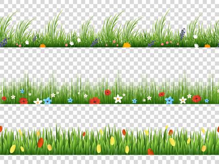 Illustration pour Vector green grass and spring flowers nature border patterns on transparent background vector illustration. Herbal and flower lawn border - image libre de droit