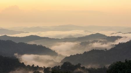 Beautiful tropical mountain mist in rain forest, Thailand.