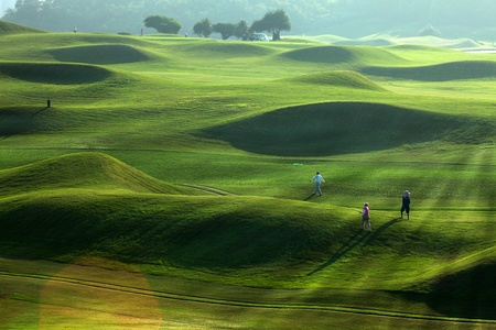 Photo for golf place with nice green  - Royalty Free Image
