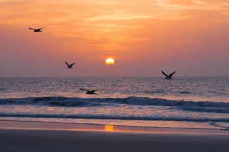 Foto de Sunset on the atlantic ocean. Florida, USA - Imagen libre de derechos
