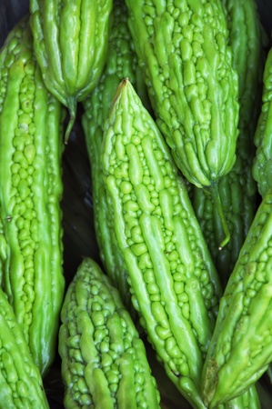 Bitter Gourd vegetable background Also known as Muop Dang in Vietnam, this amazing looking vegetable has a bitter taste and is often served stuffed with meats and herbs