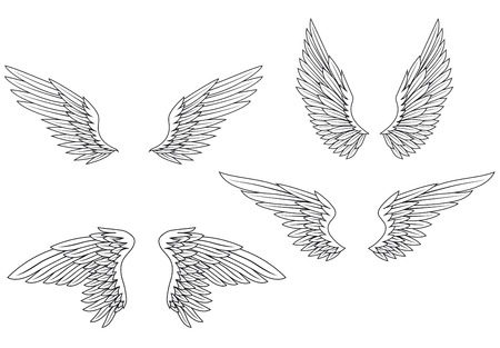Illustration for Set of heraldic wings for design and ornate - Royalty Free Image