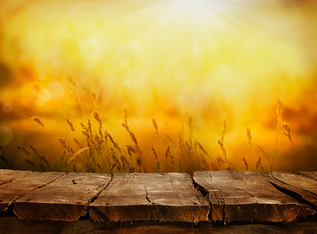Photo for Summer or autumn background. Empty tabletop layout in sunset afternoon. Wood display - Royalty Free Image