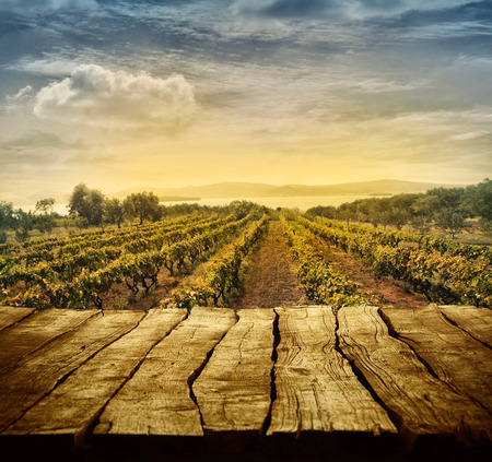 Photo for Wooden table. Spring design with vineyard and empty display. Space for your montage. Autumn grapes harvest - Royalty Free Image