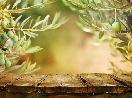 Photo for Wooden table with olive trees - Royalty Free Image