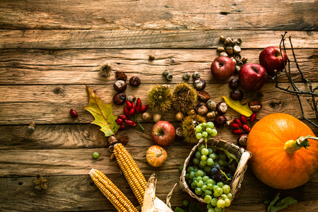Foto de Autumn fruit background. Autumn Thanksgiving seasonal fruit. Nature background - Imagen libre de derechos