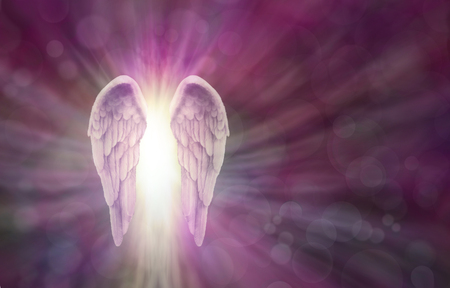 Photo for Angel Wings on Magenta  Bokeh Banner - Wide magenta bokeh background with a pair of Angel Wings on the left side and a shaft of bright light between radiating outwards and copy space all around - Royalty Free Image