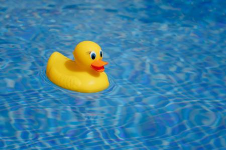 Photo pour yellow rubber duck in blue swimming pool - image libre de droit