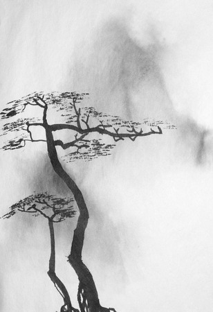 Photo for two lonely pines on the background of misty mountains - Royalty Free Image