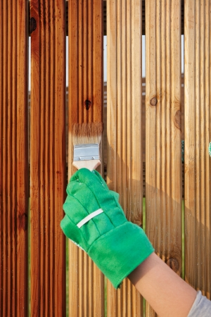 Photo pour Applying protective varnish on a patio wooden fence  - image libre de droit