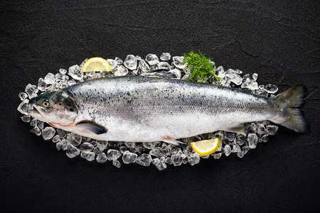 Foto de Salmon fish and ingredients on ice on a black stone table top view - Imagen libre de derechos