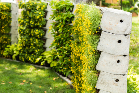 Foto de flower wall is vertical garden - Imagen libre de derechos