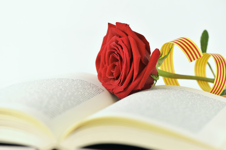Photo for closeup of a red rose and a catalan flag in an open book for Sant Jordi, the Catalan name for Saint Georges Day, when it is tradition to give red roses and books in Catalonia, Spain - Royalty Free Image
