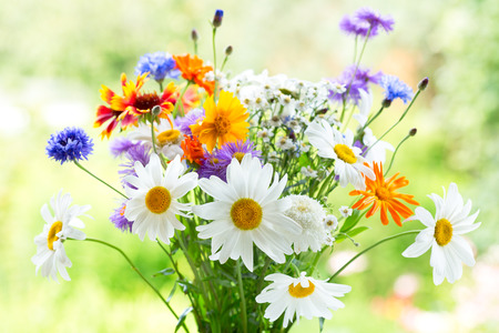 Photo pour bouquet of summer flowers on green background - image libre de droit
