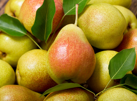 Photo pour fresh pears with leaves as background, top view - image libre de droit