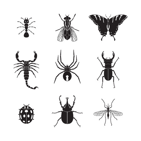 Illustration for Set of insects volume 1 - Royalty Free Image