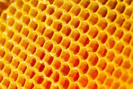 Photo pour Well-being and healthy eating concept - fresh organic honey in a comb - image libre de droit